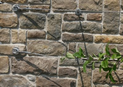Architektur-Seil-System (ASS) an einer Steinmauer